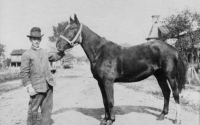 Wordless Wednesday: A Man and His Horse