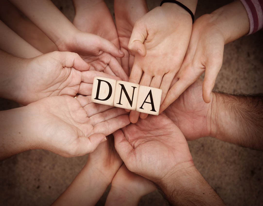 Hands holding blocks spelling DNA